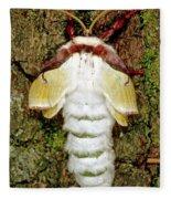Luna Moth Actias Luna Fleece Blanket