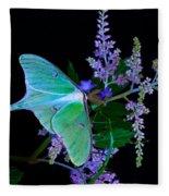 Luna Moth Astilby Flower Black Fleece Blanket
