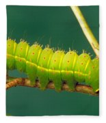 Luna Moth Caterpillar Fleece Blanket