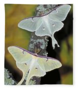 Luna Moth Fleece Blanket