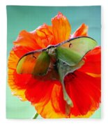 Luna Moth On Poppy Aqua Back Ground Fleece Blanket