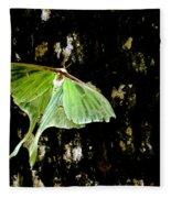 Luna Moth On Tree Fleece Blanket