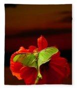 Luna Moth Poppy Evening Sky Fleece Blanket