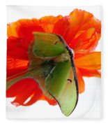 Luna Moth Poppy High Key Fleece Blanket