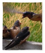 Lunch Is Served To The Fourth Baby Barn Swallow Fleece Blanket