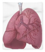 Lungs And Bronchi Fleece Blanket