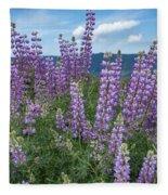Lupine Blooms Of Bald Hills Fleece Blanket