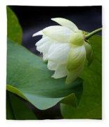 Luscious Lotus Fleece Blanket