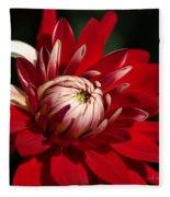 Lush Red Dahlia Fleece Blanket