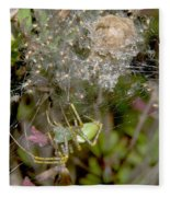 Lynx Spider And Young Fleece Blanket