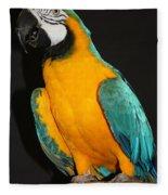 Macaw Hanging Out Fleece Blanket
