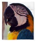 Macaw Head Study Fleece Blanket
