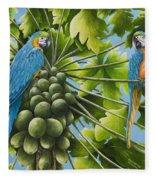 Macaw Parrots In Papaya Tree Fleece Blanket