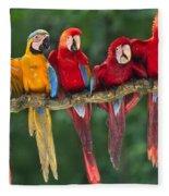 Macaws Fleece Blanket