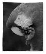 Macaws Of Color B W 18 Fleece Blanket