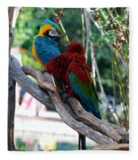 Macaws Of Color24 Fleece Blanket