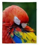Macaws Of Color26 Fleece Blanket