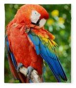 Macaws Of Color31 Fleece Blanket