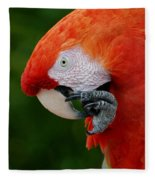 Macaws Of Color32 Fleece Blanket