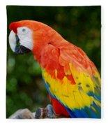 Macaws Of Color33 Fleece Blanket