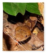 Macro Copperhead Fleece Blanket