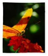 Macro Of An Orange Butterfly Fleece Blanket