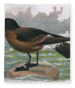 Madeira Petrel Fleece Blanket