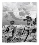 Magnificent Grand Canyon Fleece Blanket