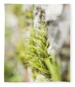 Maiden-hair Spleenwort Fleece Blanket
