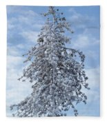 Maine Winter 2013  Fleece Blanket