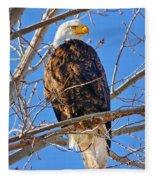 Majestic Bald Eagle Fleece Blanket