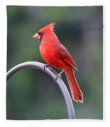 Majestic Cardinal Fleece Blanket