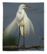 Majestic Great Egret Fleece Blanket
