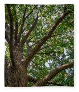 Majestic Oak Fleece Blanket