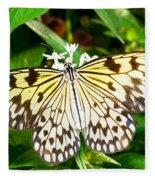 Malabar Tree Nymph Butterfly Fleece Blanket