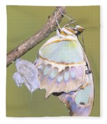 Malachite Butterfly Emerging 6 Of 6 Fleece Blanket