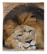 Male African Lion Fleece Blanket
