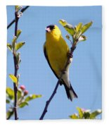 Male American Goldfinch Gathering Feathers For The Nest Fleece Blanket