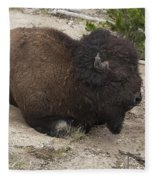 Male Buffalo At Hot Springs Fleece Blanket
