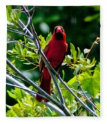 Male Cardinal Fleece Blanket
