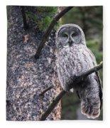 Male Great Gray Owl Fleece Blanket
