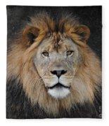 Male Lion Portrait Fleece Blanket