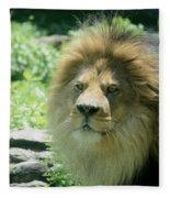 Male Lion Up Close Fleece Blanket