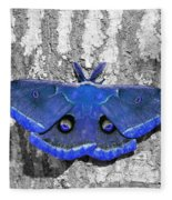 Male Moth - Brilliant Blue Fleece Blanket