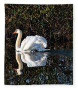 Male Mute Swan Fleece Blanket