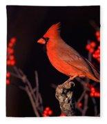 Male Northern Cardinal Fleece Blanket