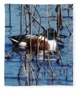 Male Northern Shoveler Lacassine Nwr Fleece Blanket