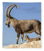 Male Nubian Ibex Fleece Blanket