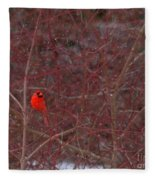 Male Red Cardinal In The Snow Fleece Blanket
