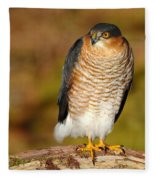 Male Sparrowhawk Fleece Blanket